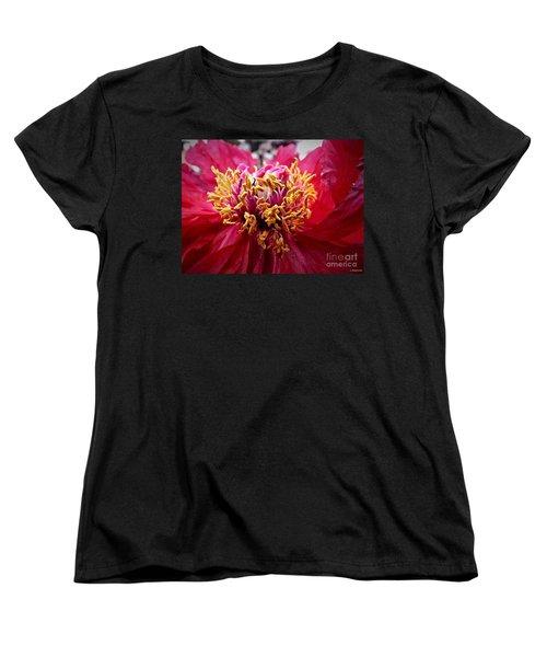 Fancy  Women's T-Shirt (Standard Cut) by Christy Ricafrente