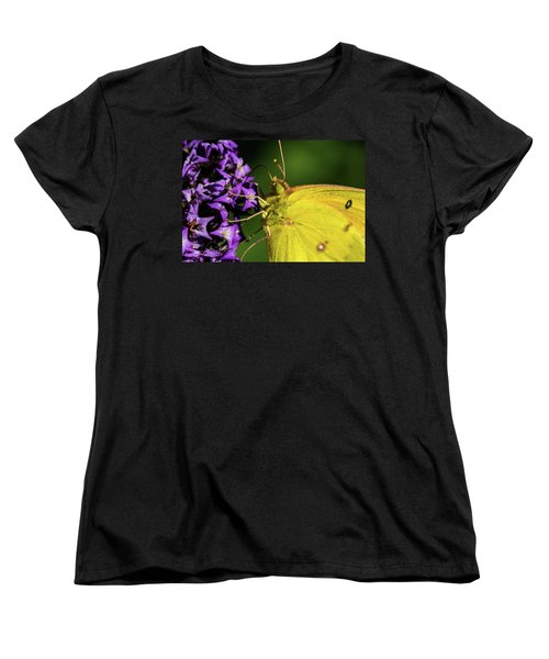 Women's T-Shirt (Standard Cut) featuring the photograph Feeding Butterfly by Jay Stockhaus