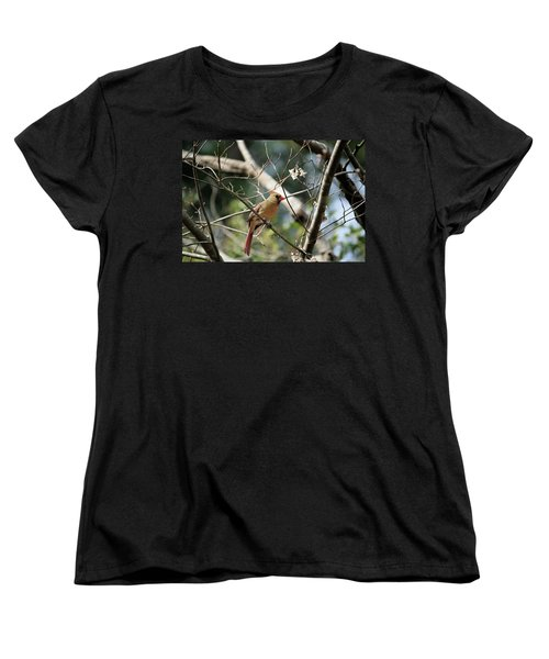 Women's T-Shirt (Standard Cut) featuring the photograph Female Cardinal by Cathy Harper