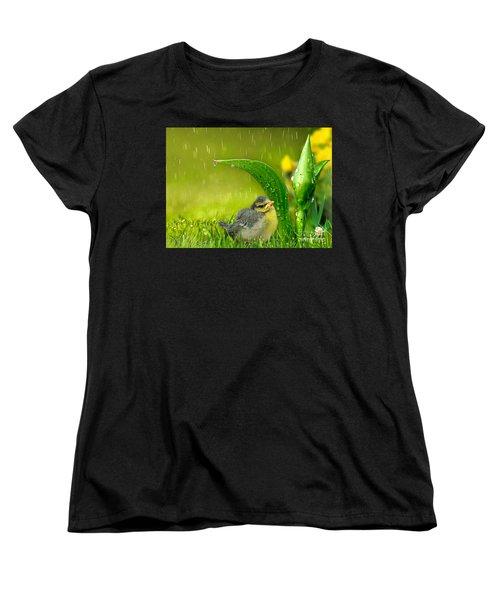 Finding Shelter Women's T-Shirt (Standard Cut) by Morag Bates