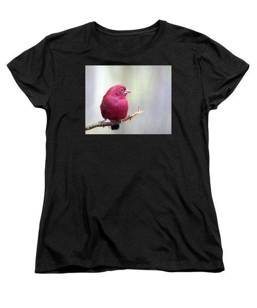 Fire Finch Women's T-Shirt (Standard Cut) by Marion Cullen