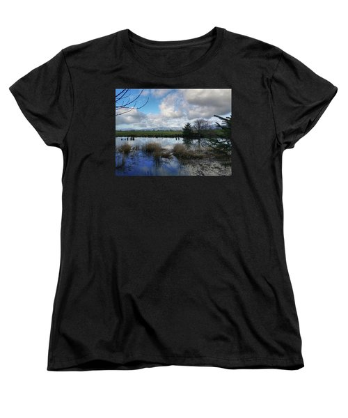 Flooding River, Field And Clouds Women's T-Shirt (Standard Cut) by Chriss Pagani