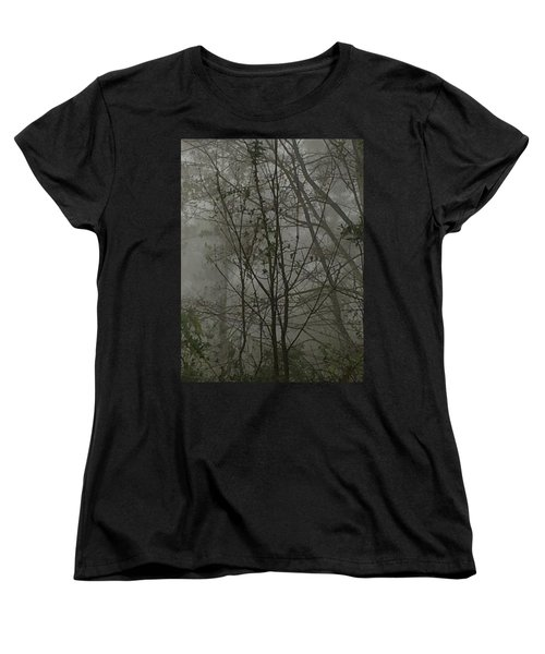 Foggy Woods Photo  Women's T-Shirt (Standard Cut)