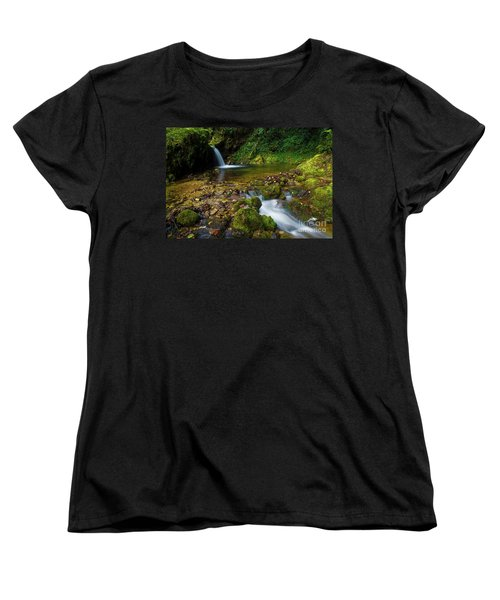 Women's T-Shirt (Standard Cut) featuring the photograph Follow It by Yuri Santin