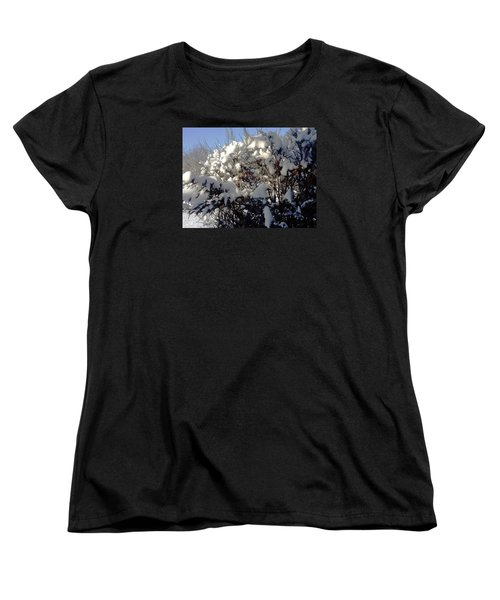Fresc Snow Women's T-Shirt (Standard Cut) by Vicky Tarcau