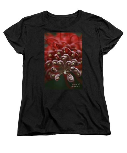Friendly Foe Women's T-Shirt (Standard Cut) by Stephen Mitchell