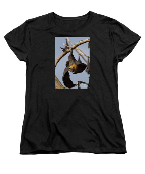Fruit Bat Hanging Women's T-Shirt (Standard Cut) by Craig Dingle