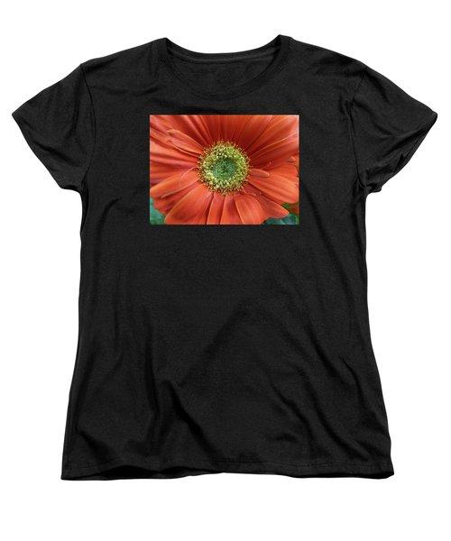 Gerber Daisy Women's T-Shirt (Standard Cut) by Geraldine Alexander