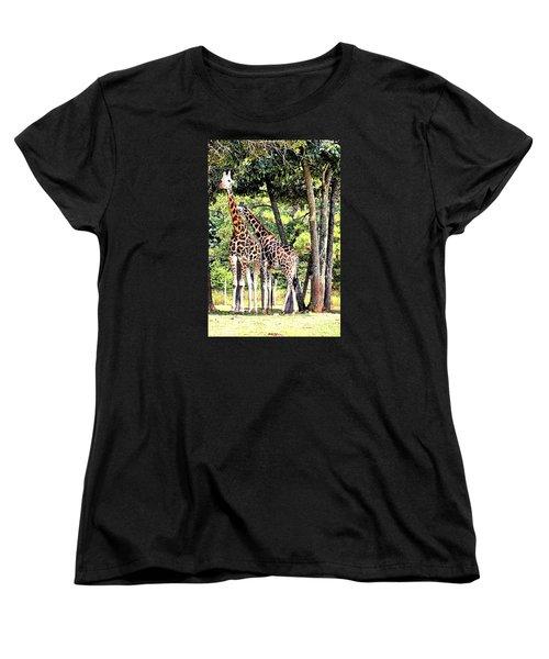 Giraffe Women's T-Shirt (Standard Cut) by James Potts