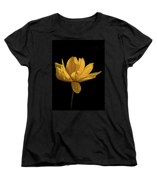 Golden Coreopsis Women's T-Shirt (Standard Cut) by Jacqi Elmslie