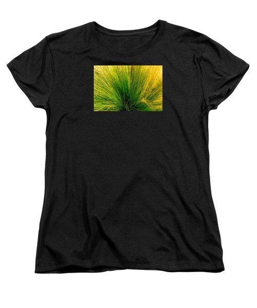 Grass Women's T-Shirt (Standard Cut) by Derek Dean