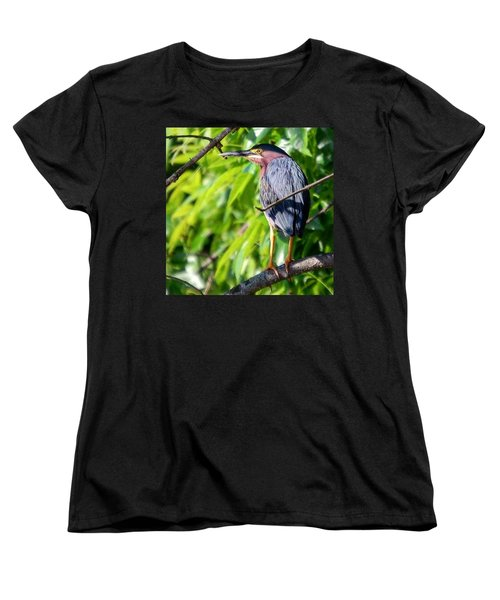 Green Heron Women's T-Shirt (Standard Cut) by Sumoflam Photography