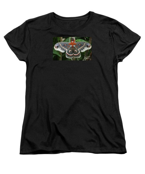 Women's T-Shirt (Standard Cut) featuring the photograph Happy Birthday by Randy Bodkins