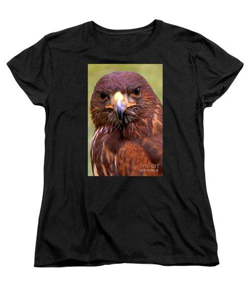 Harris Hawk Portriat Women's T-Shirt (Standard Cut) by Stephen Melia