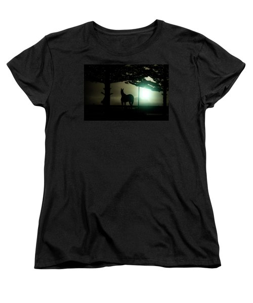 Hat-trick Women's T-Shirt (Standard Cut) by Douglas Barnard