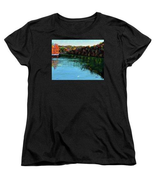 Hdemo1 Women's T-Shirt (Standard Cut) by Stan Hamilton