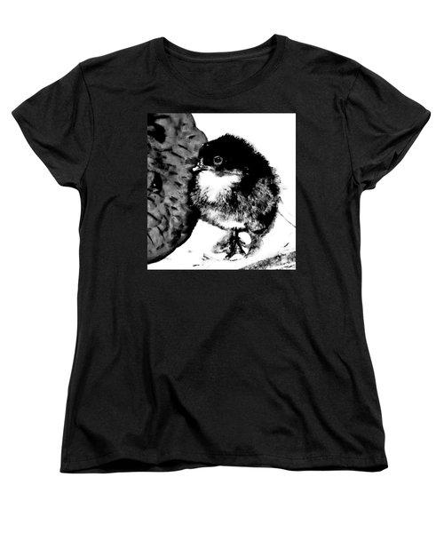 Hello Baby Chick Women's T-Shirt (Standard Cut)