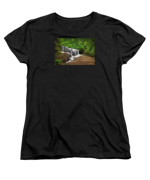 Hidden Falls  Women's T-Shirt (Standard Cut) by Rikk Flohr
