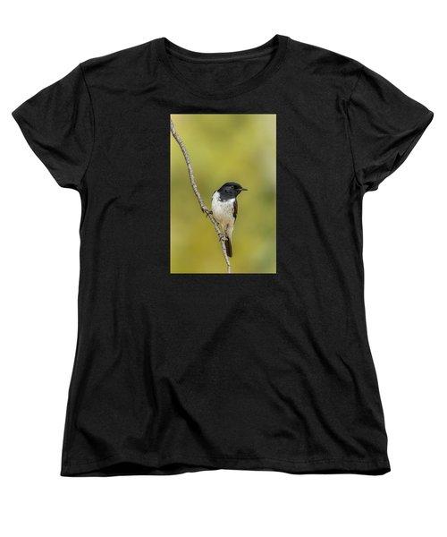 Hooded Robin Women's T-Shirt (Standard Cut) by Racheal  Christian