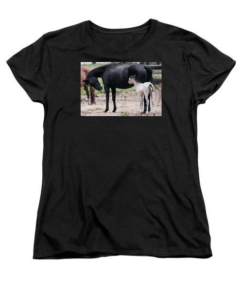 Horse And Colt Women's T-Shirt (Standard Cut) by Debra Crank