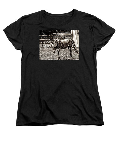 Horse In Black And White Women's T-Shirt (Standard Cut)