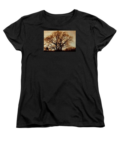 Horse In The Willows Women's T-Shirt (Standard Cut) by Rena Trepanier