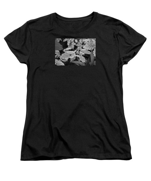 Hosta Bw - Pla363 Women's T-Shirt (Standard Cut) by G L Sarti