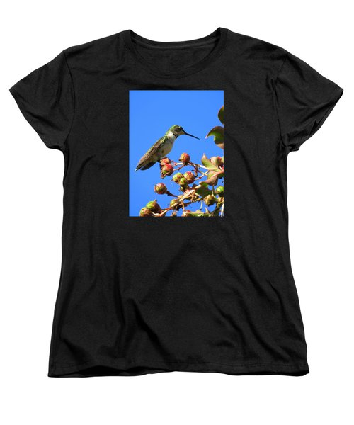 Women's T-Shirt (Standard Cut) featuring the photograph Hummingbird Watch by Phyllis Beiser