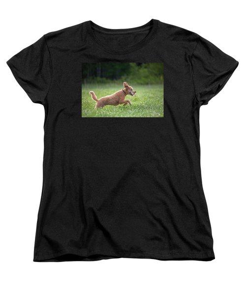Hunting Dog Women's T-Shirt (Standard Cut) by Teemu Tretjakov