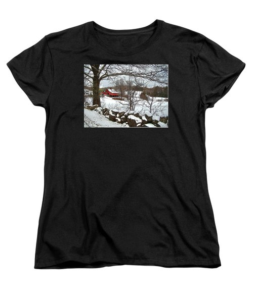 Iconic New Hampshire Women's T-Shirt (Standard Cut) by Betsy Zimmerli