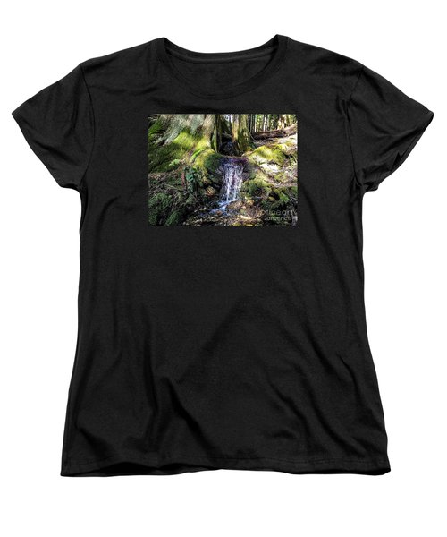 Women's T-Shirt (Standard Cut) featuring the photograph Island Stream by William Wyckoff