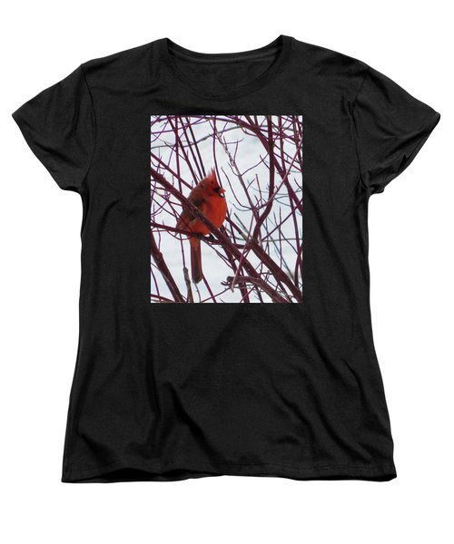 Blending In Women's T-Shirt (Standard Cut)