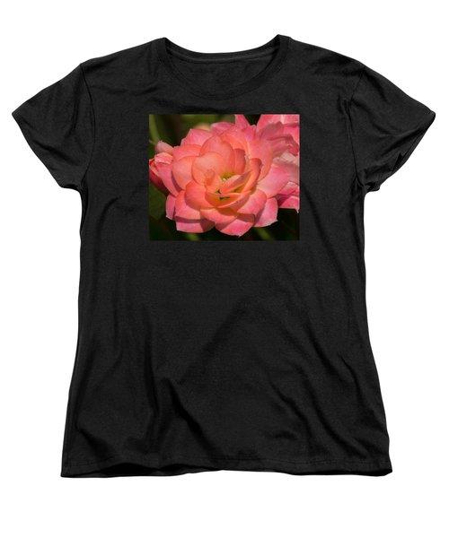 Kalanchoe Women's T-Shirt (Standard Cut) by Arlene Carmel