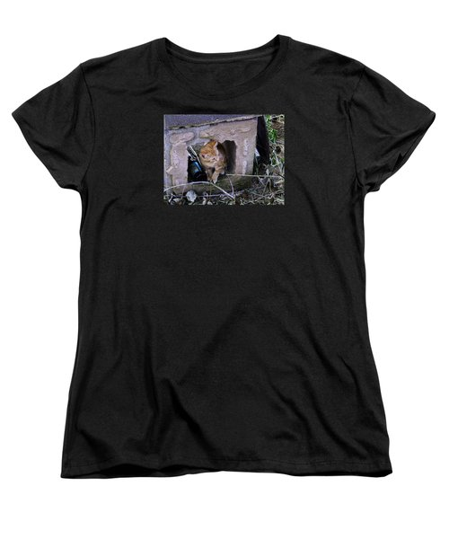 Kitten In The Junk Yard Women's T-Shirt (Standard Cut) by Larry Capra