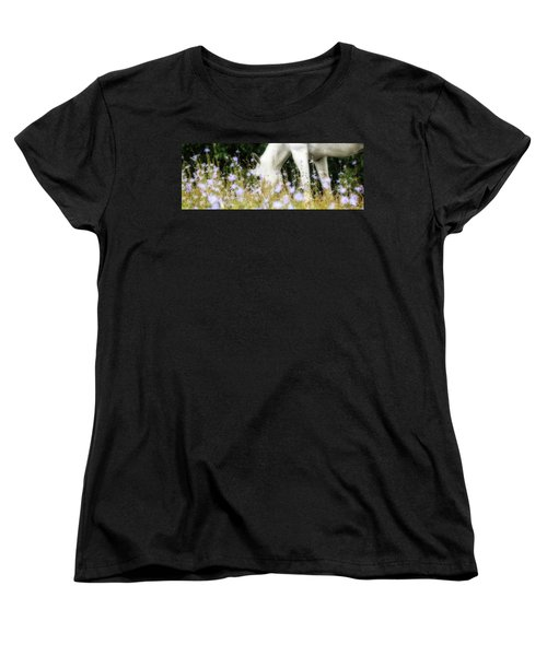 Lavender Dreams Women's T-Shirt (Standard Cut) by Joan Davis