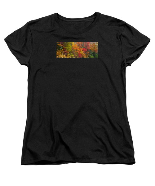 Leaf Tapestry Women's T-Shirt (Standard Cut) by Rob Hemphill