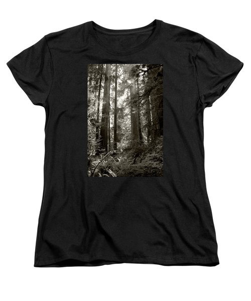 Light Through Redwoods Women's T-Shirt (Standard Cut) by Kathleen Grace