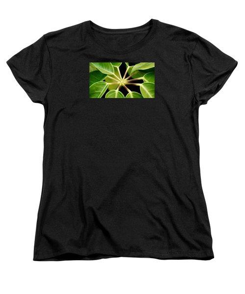 like a Star Women's T-Shirt (Standard Cut) by Werner Lehmann