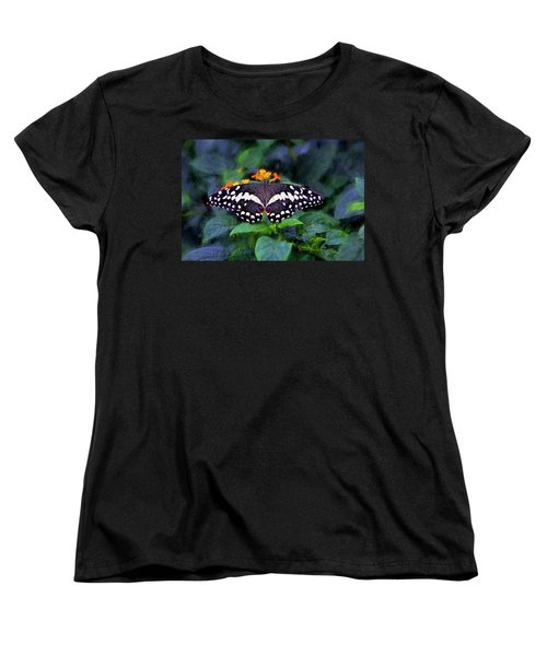 Lime Swallow Tail Women's T-Shirt (Standard Cut) by James Steele