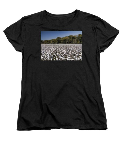 Limestone County Alabama Cotton Crop Women's T-Shirt (Standard Cut) by Kathy Clark