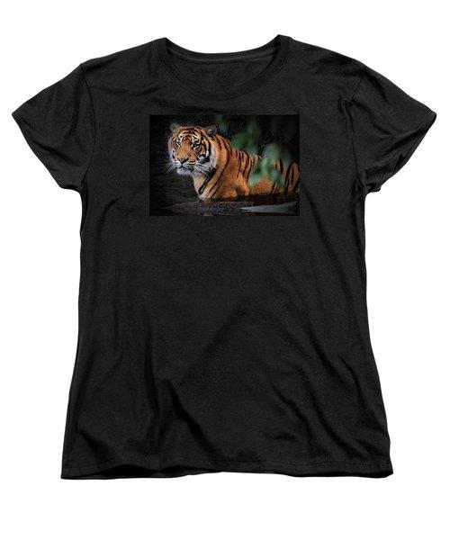 Looking Oh So Sweet Women's T-Shirt (Standard Cut)