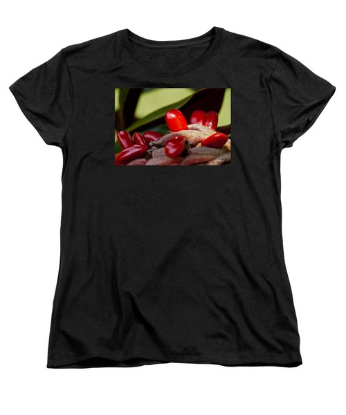 Magnolia Seeds Women's T-Shirt (Standard Cut) by Christopher Holmes