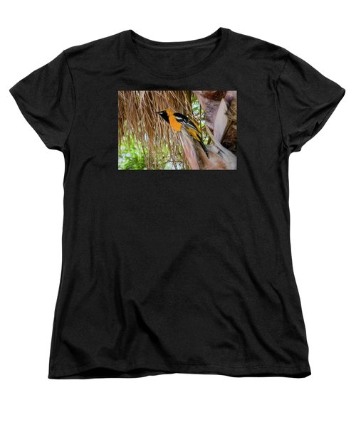 Male Hooded Oriole H17 Women's T-Shirt (Standard Cut) by Mark Myhaver
