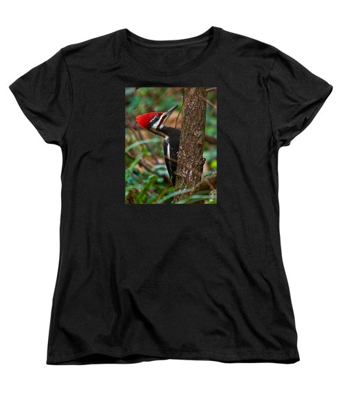 Male Pileated Woodpecker Women's T-Shirt (Standard Cut) by Robert L Jackson