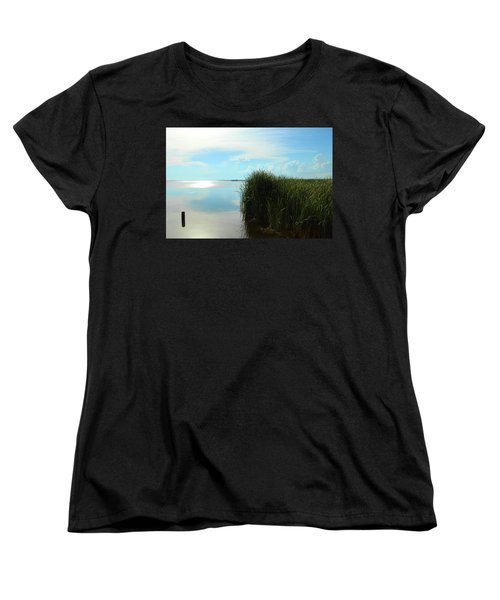 Marshland Women's T-Shirt (Standard Cut) by David Stasiak