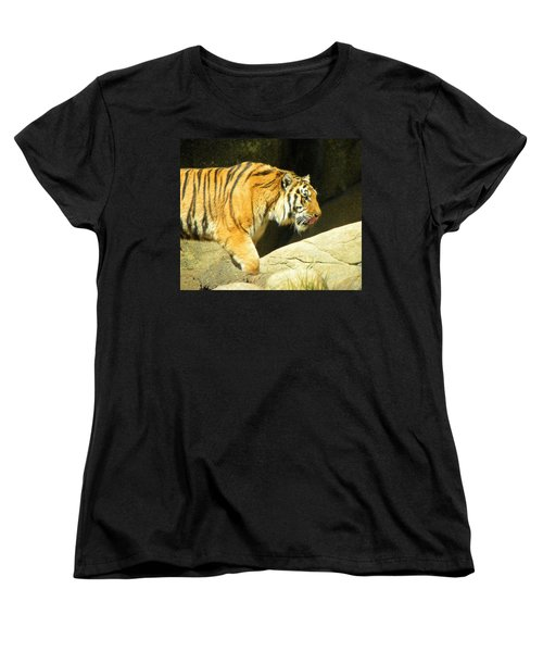 Women's T-Shirt (Standard Cut) featuring the photograph Meal Time by Sandi OReilly