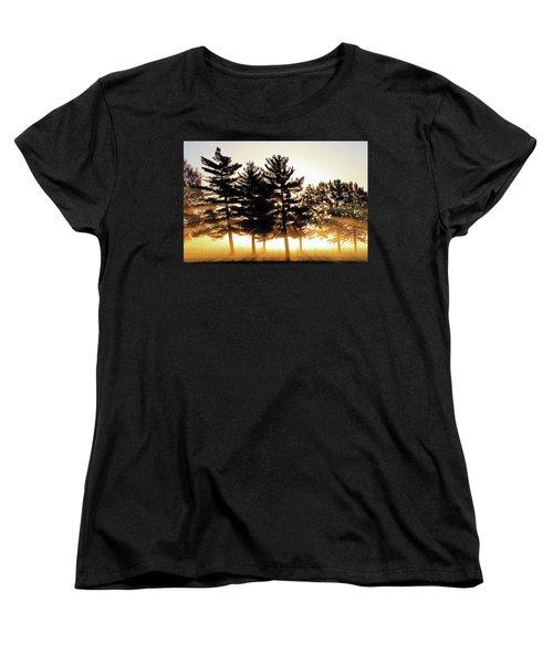 Missouri Tree Line Women's T-Shirt (Standard Cut) by Christopher McKenzie
