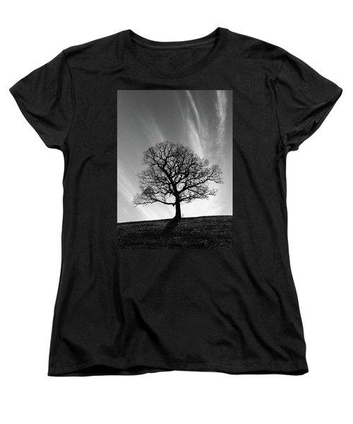 Missouri Treescape Women's T-Shirt (Standard Cut) by Christopher McKenzie