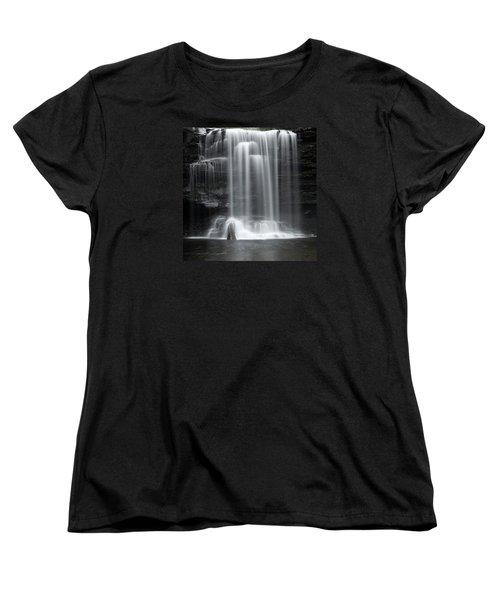 Misty Canyon Waterfall Women's T-Shirt (Standard Cut)