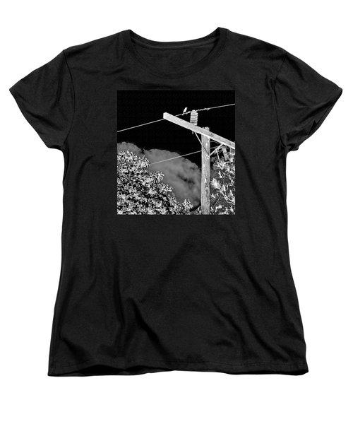 Mockingbird On A Wire Women's T-Shirt (Standard Cut)